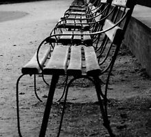 Benches by Adam Symes