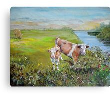 Cows and Calf eating from a hedge standing in a field on the bank of a river with distant hills Canvas Print