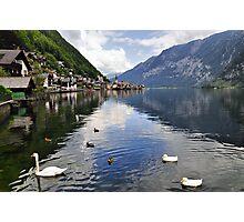 Swans in Hallstatt, Austria Photographic Print