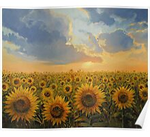 Sun Harmony Poster