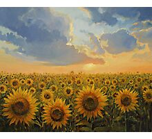 Sun Harmony Photographic Print