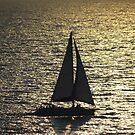 Sunset Sailing - Navegando a Vela en la Puesta del Sol by PtoVallartaMex