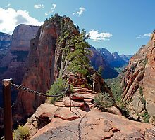 The Step of Faith on Angels Landing by Martin Lawrence