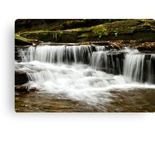 Whispering Waterfall Landscape Canvas Print