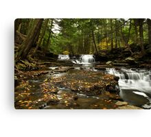 Peaceful Flowing Waterfalls Canvas Print