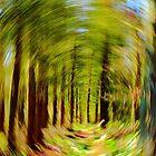 Abstract Woodland Path by John Dunbar