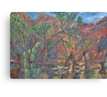 Off Snyder Road, Sabino Canyon. Canvas Print