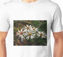 Calico Unisex T-Shirt