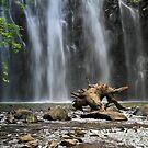 Ellinjaa Falls II by Bevlea Ross