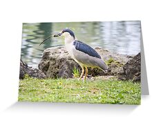 Choice construction material Greeting Card