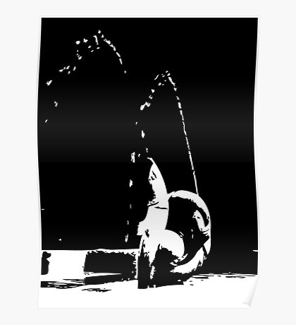 Fountain in Stark Contrast Poster