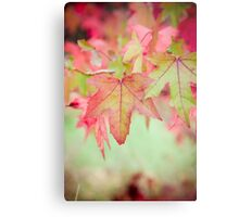 Autumn Leaves II Metal Print