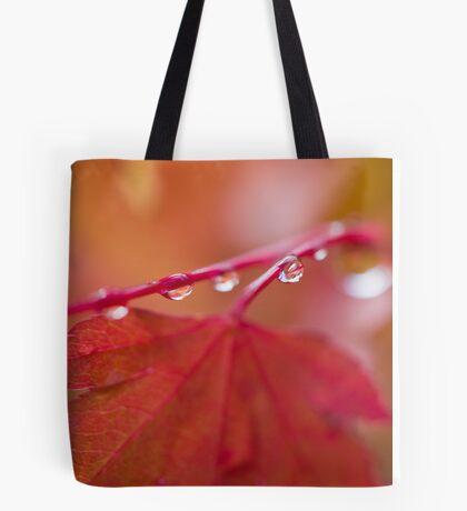 Autumn Leave III Tote Bag