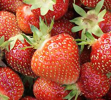 Strawberries! by Shannon Ferguson