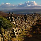 Barden Moor, Yorkshire Dales by Jim Round