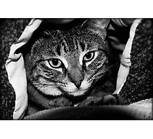 Blanket Cave Photographic Print