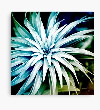 Blue Spiral Abstract Canvas Print