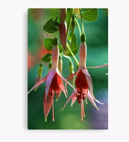 Flowers @ Butchart Gardens II Canvas Print