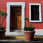 House in Old San Juan by avresa