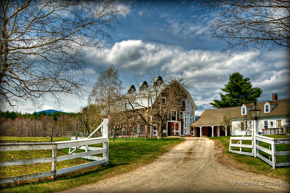 The Farm by Monica M. Scanlan