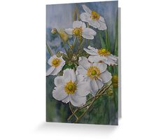 Anemones in Autumn Greeting Card