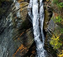 Taughannock Waterfalls Landscape by Christina Rollo