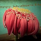 Mother and a flower... by mariatheresa