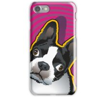 quizzical Bailey iPhone Case/Skin