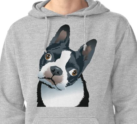 quizzical Bailey Pullover Hoodie