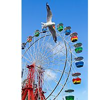 runing bird and wheel Photographic Print