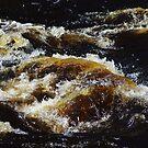 My wild old river. II by Bluesrose