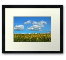 Country Field with Flowers Framed Print