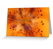 Beauty Spots Greeting Card