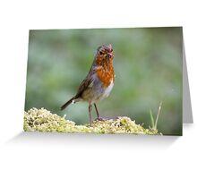 Ragged Robin Greeting Card