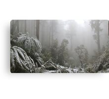 A Forest of Ash and snow  Canvas Print