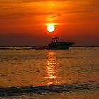 Florida Sunsets by Irina777