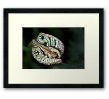 green spooning Framed Print