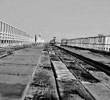Bowen Pier by Jamie Shirlaw