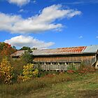 Caine Road Covered Bridge by Jack Ryan