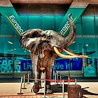 Elephant Statue at Cape Town International Airport, South Africa by John  Paper