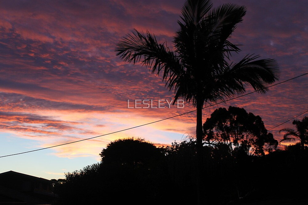 Sun Set from home by LESLEY BUtler