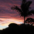 Sun Set from home by LESLEY B