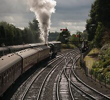 Full steam ahead by John Hallett