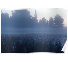 Newberry Pond #2 Poster