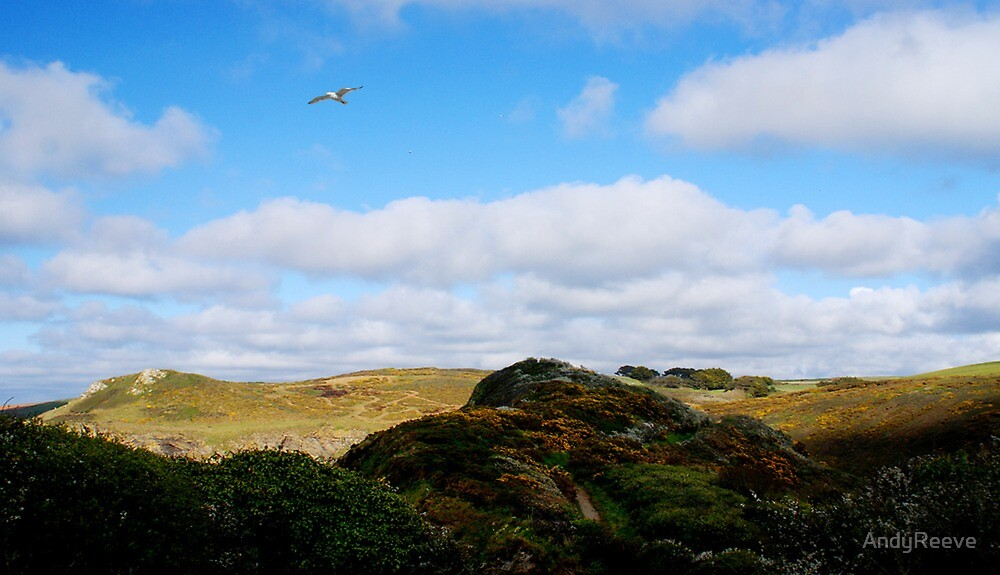 LUNDY COVE. by AndyReeve