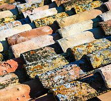 Roof with old shingles by PhotoStock-Isra