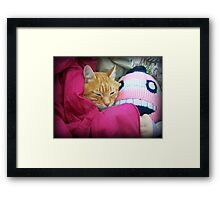 It's nap time. Framed Print