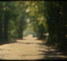 Kustenmacher Road by leapdaybride