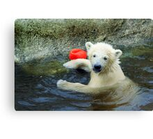 Playing the Ball - Baby Polar Bear Canvas Print