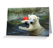 Playing the Ball - Baby Polar Bear Greeting Card